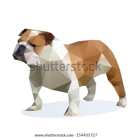 vector  bulldog isolated on a