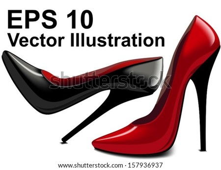 beautiful pair of shoes vector