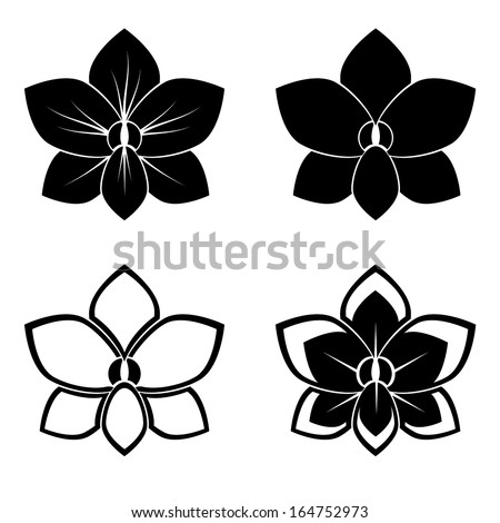 four orchid silhouettes for