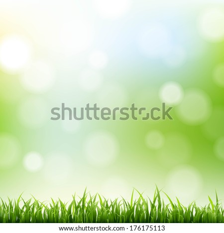 grass border with bokeh