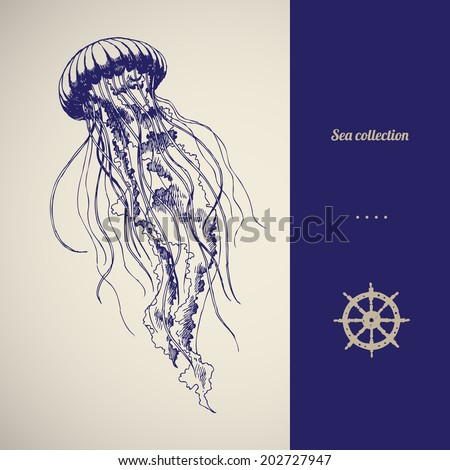 hand drawn jellyfish vector