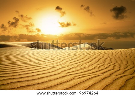 gold desert in sunset canary