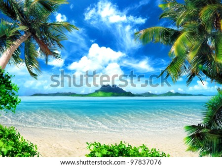 tropical coast  beach with hang