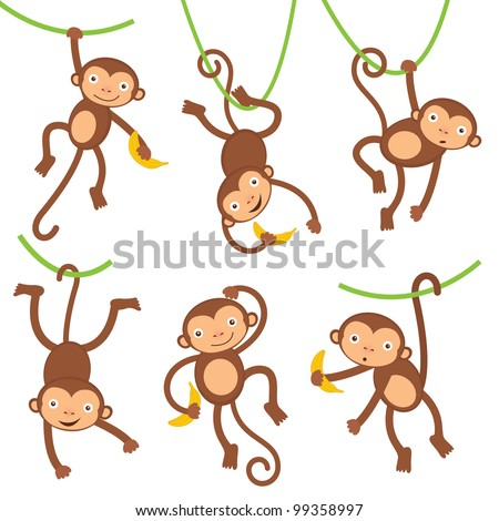 funny monkeys set