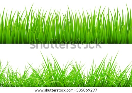2 Backgrounds Of Green Grass, Isolated On White Background, Illustration art