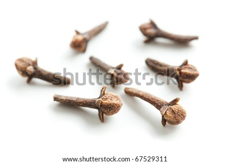 cloves on white background