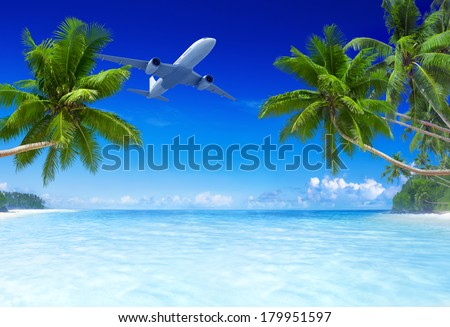 3D Airplane Flying Over Tropical Beach