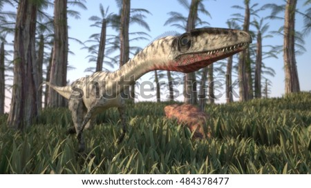 3d illustration of alluring coelophysis dinosaur