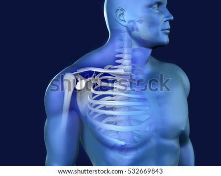 3d image of pain in human shoulder.X-ray image concept.
