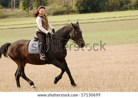 Equestrienne rides on the hillside. Hanoverian.