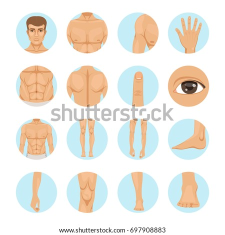 Different Body Parts Of Man 107