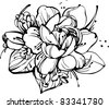 image a small bouquet of roses and snowdrops - stock vector
