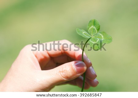 four leaf clover rare find There's a reason why one of the most popular symbols of st patrick's day is the four leaf clover for centuries, the rare little clover has been used as a good luck charm.