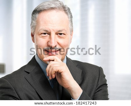 Mature businessman in his office