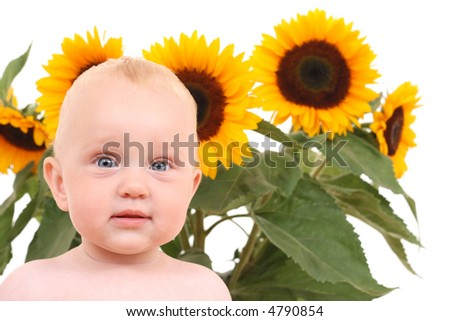 10 months baby girl in sunflowers on white