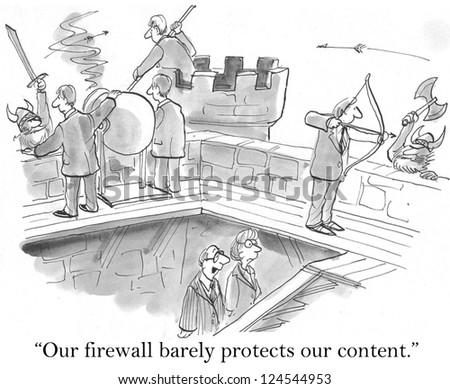 """Our firewall barely protects our content"" against raiders."