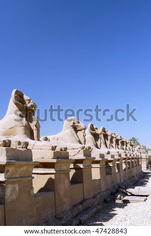 Ruin of the Karnak Temple Complex. Alley of Sphinx  -Lions with Ram head . Luxor, Egypt