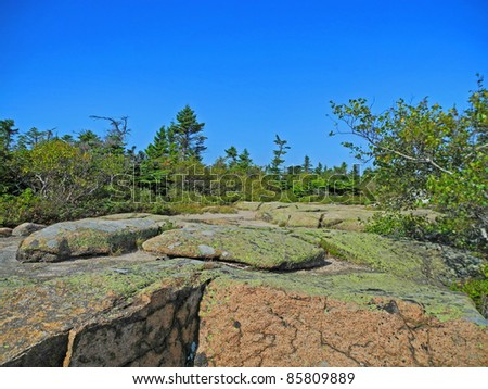 Scenic view from the summit of Cadillac Mountain in Acadia National Park in Maine, with pink granite boulders, lichen and low trees, and azure sky above.