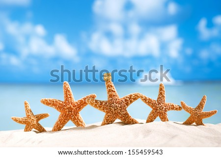 5 star holidays deal !  starfish  with ocean , beach and seascape, shallow dof