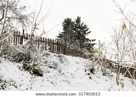 the trees covered with snow after a snowfall in the last winter season. Autumn season. Small depth of field. Wooden fence and sky in the background