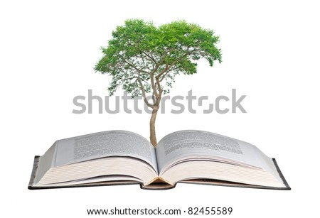 tree growing from book