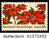 UNITED STATES - CIRCA 1980's : A stamp printed in United States. Poinsettia plants and season greetings Christmas issue. United States - CIRCA 1980's - stock photo
