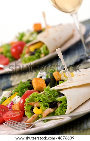 A appetizing chicken wrap with lots of vegetables and a side salad.