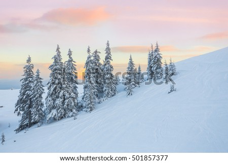 A beautiful sunset in the sunny foothills of the Alps affects the viewer's imagination, dense forests on the slopes conceal the traces of civilization
