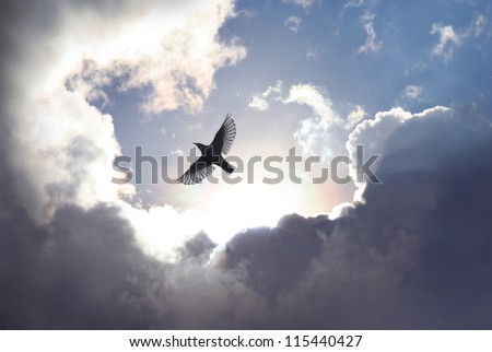 A bird spreading its wings to fly to heaven trough dramatic cloudscape.