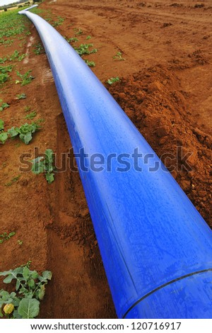 A blue water pipe resting on red soil before being buried underground.