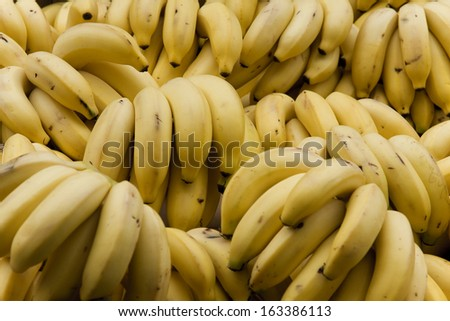 A bunch of fresh and ripe bananas.