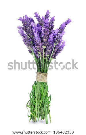 a bunch of lavender flowers tied with a string on a white background