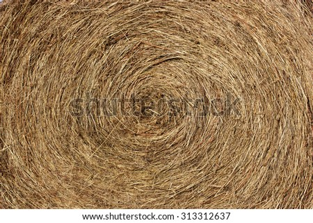 A close-up stack of hay twisted in a circle. Dried herbs. Space for typing text