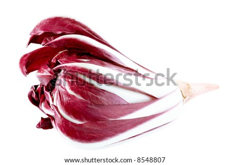 A closed up shot of some italian chicory (radicchio rosso) isolated on white