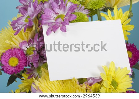 A colorful bunch of fresh spring flowers on a bright blue background with blank note card to add your message