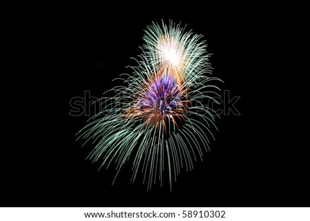 A colorful burst of fireworks lighting the night sky