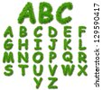 A concept or conceptual set or collection of green grass,eco font isolated on white background,ideal for nature,summer,spring,alphabet,ecology,environment,plant,abc,ecological,conservation design - stock vector
