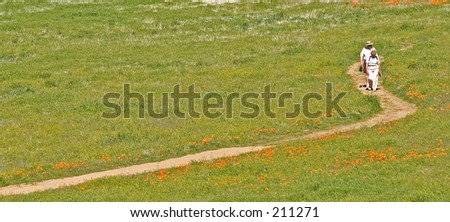 A couple strolling along a path beside newly sprung orange poppies.