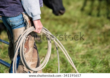 A cowboy holding a rope and lasso while sorting cattle on a ranch.