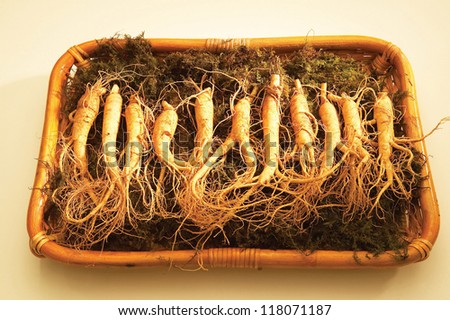 a dozen of ginsengs lying on a tray in order