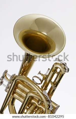 A gold brass cornet or trumpet isolated against a white background