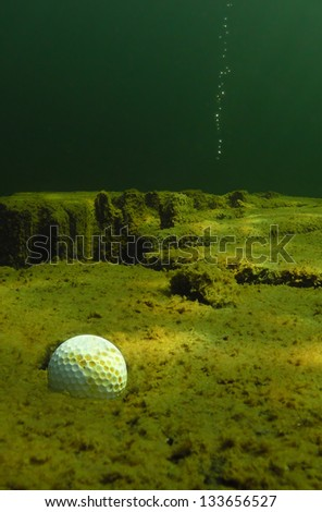 A golf ball rests in a water hazard after a poor shot.