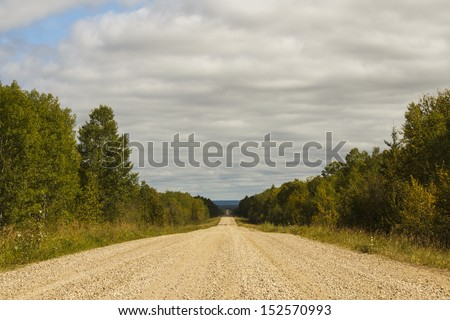A gravel road between trees in the countryside