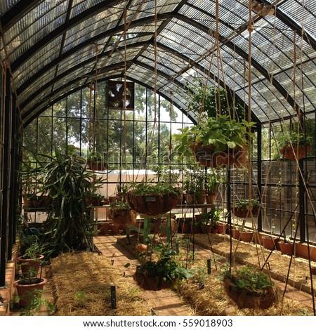 Superior A Greenhouse Interior.