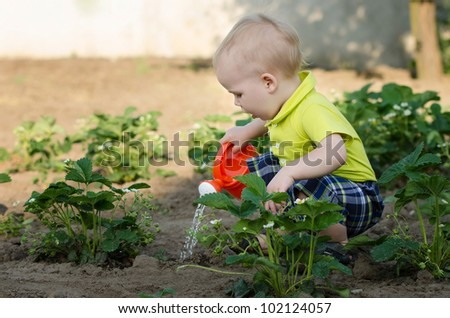 a little boy pouring flowers