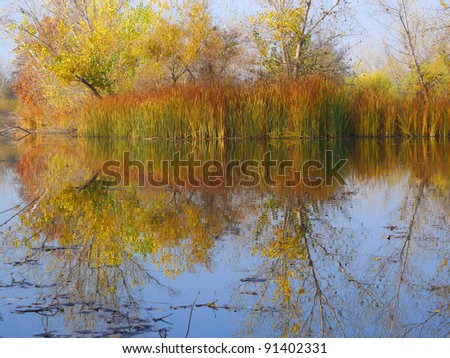 A municipal water storage area creates a quiet pond revealing trees and foliage in fall color