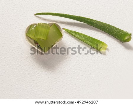 a pair of aloe vera sliced with water drops on white background-selective focus