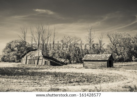 A rustic old wooden barn is falling down. Taken with an infared filter.