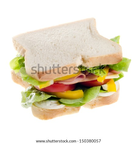 a sandwich isolated before white background