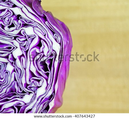 A section of purple cabbage showing the inside swirly pattern. Copy space on the right.
